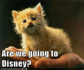 Are we going to Disney?
