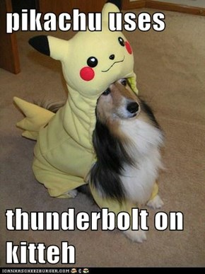 pikachu uses  thunderbolt on kitteh