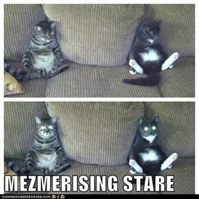 MEZMERISING STARE