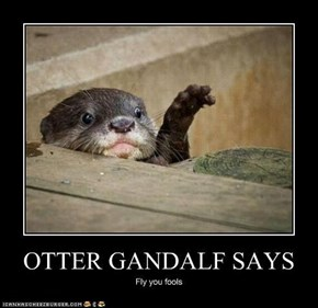 Lord of the Otters