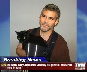 Breaking News - He's my baby, declares Clooney as genetic  research fury breaks