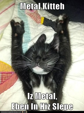 Metal Kitteh  Iz Metal,                            Eben In Hiz Slepe
