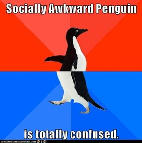 Socially Awkward Penguin  is totally confused.