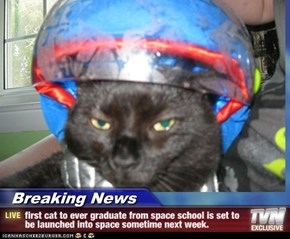 Breaking News - first cat to ever graduate from space school is set to be launched into space sometime next week.