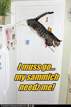 Cuz it's a... wayt fur it... Hero Sammich!