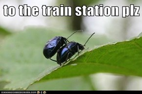 to the train station plz