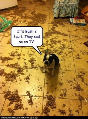 It's Bush's fault. They sed so on TV.