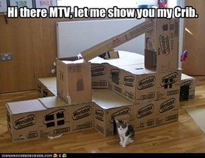 Cat's Crib on MTV