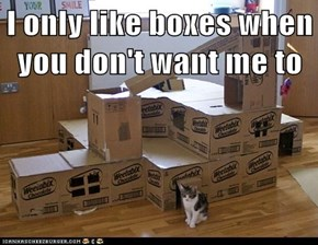 I only like boxes when you don't want me to