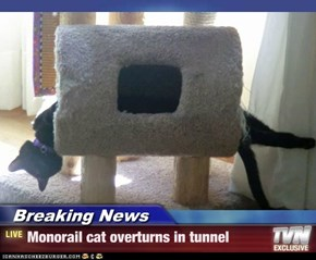 Breaking News - Monorail cat overturns in tunnel