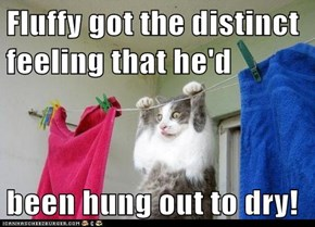 Fluffy got the distinct feeling that he'd   been hung out to dry!