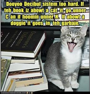 Bob the Liberry Cat meets Dewey Decimal