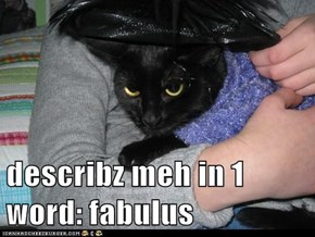 describz meh in 1 word: fabulus