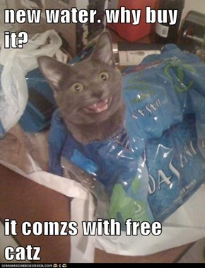 new water. why buy it?  it comzs with free catz