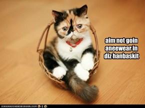 aim gud kitteh!