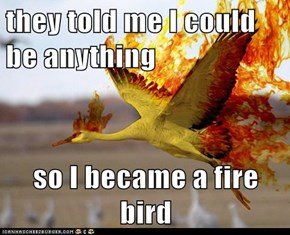 they told me I could be anything  so I became a fire bird