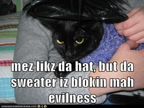 mez likz da hat, but da sweater iz blokin mah evilness