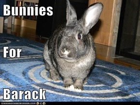 Bunnies For Barack