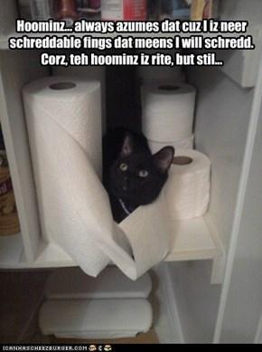 I iz a Cat, so i schredd stuffz