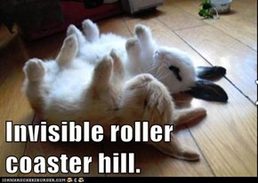 Invisible roller coaster hill.