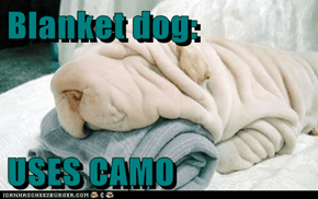 Blanket dog:  USES CAMO
