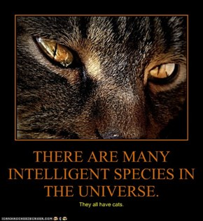 THERE ARE MANY INTELLIGENT SPECIES IN THE UNIVERSE.