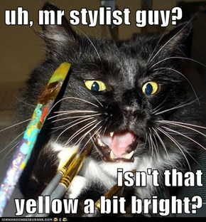 uh, mr stylist guy?  isn't that                                yellow a bit bright?