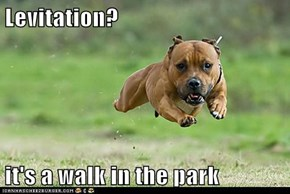 Levitation?  it's a walk in the park