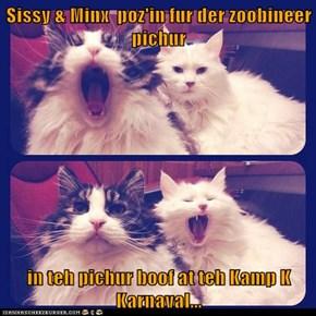 Sissy & Minx  poz'in fur der zoobineer pichur  in teh pichur boof at teh Kamp K Karnaval...