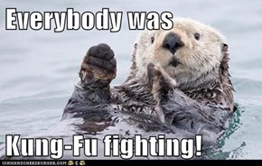 Everybody was  Kung-Fu fighting!