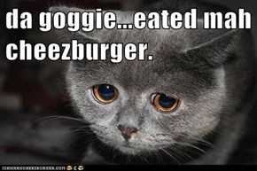 da goggie...eated mah cheezburger.