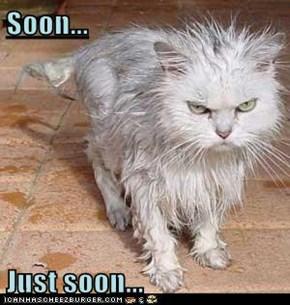 Soon...  Just soon...