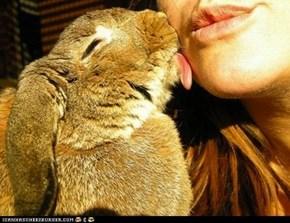 Bunday: Kisses