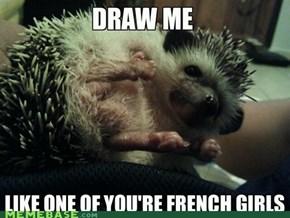 Le Petit Hedgehog