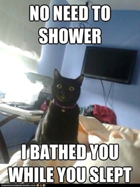 Overly Attached Cat: My Tongue's Sore, But It Was Worth It...