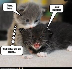 I want mamma!
