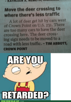 Blame It On The Deers