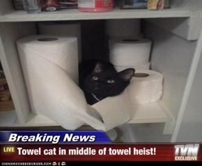 Breaking News - Towel cat in middle of towel heist!