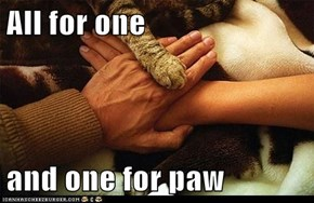 All for one  and one for paw