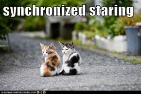 synchronized staring