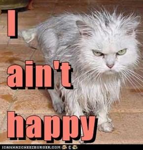 I  ain't happy