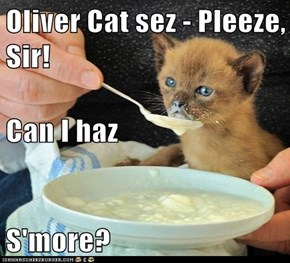 Oliver Cat sez - Pleeze, Sir! Can I haz S'more?