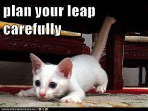 plan your leap carefully