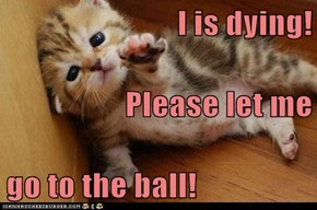 I is dying! Please let me go to the ball!