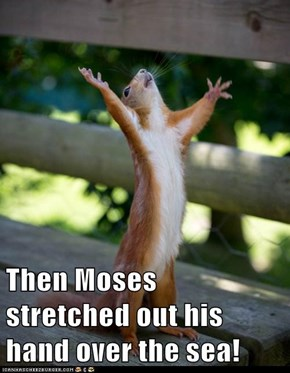 Then Moses stretched out his hand over the sea!