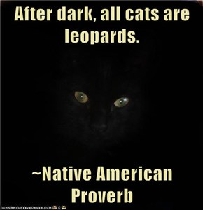After dark, all cats are leopards.  ~Native American Proverb