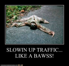 SLOWIN UP TRAFFIC... LIKE A BAWSS!