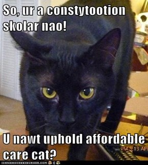 So, ur a constytootion skolar nao!  U nawt uphold affordable care cat?