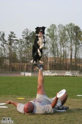 Pet Trick WIN