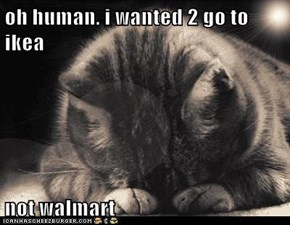 oh human. i wanted 2 go to ikea  not walmart